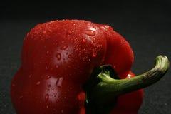 pepper Zdjęcia Royalty Free