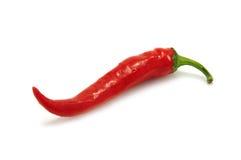 Pepper Royalty Free Stock Photos