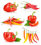 Pepper_all_03(3).jpg Royalty Free Stock Photo