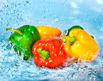 Free Pepper And Water Royalty Free Stock Photos - 14806088