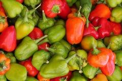 Pepper assortment. Organic pepper assortment at farmer's market Stock Photography