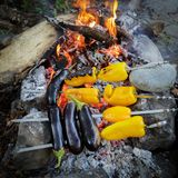 Pepper and aubergines are fried on a fire at a picnic Royalty Free Stock Images