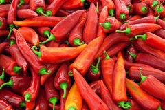 Pepper background Stock Photo