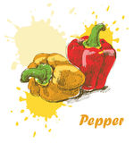 Pepper background Royalty Free Stock Image