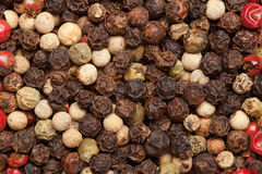 Pepper background Stock Images