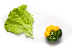Pepper on a background. Yellow and green pepper on a white background Stock Images