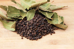 Pepper and bay leaves Stock Image