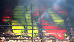 Pepper BBQ stock footage
