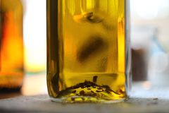 Chilli and oil. Pepper in a bottle of oil Royalty Free Stock Photography
