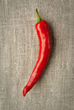 Pepper on the canvas background Royalty Free Stock Photos