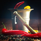 Pepper , chili and mortar Stock Photography