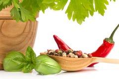 Pepper chili. Stock Image