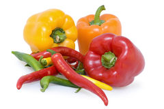 Pepper and chillies. On white backround Stock Photography
