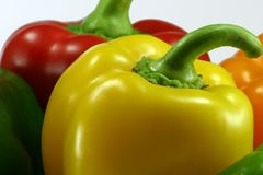 Pepper Closeup. Isolation of Yellow, Red and Orange Pepper Plants on White Background stock photo