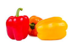 Pepper Royalty Free Stock Photos