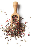 Pepper corn spice Royalty Free Stock Photography