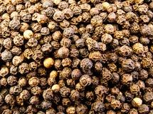Pepper Corns Stock Image