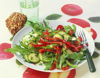 Pepper and courgette salad. On rocket stock image