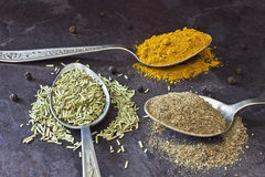 Pepper curry and rosemary. Spices in a spoon on the table Stock Image