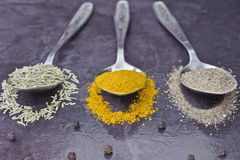 Pepper curry and rosemary. Spices in a spoon on the table Royalty Free Stock Image