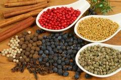 Pepper, fenugreek, cinnamon Royalty Free Stock Photos
