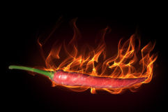 Pepper in fire Stock Photos