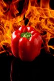Pepper with fire background Royalty Free Stock Image