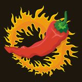 Pepper with flame Stock Image