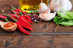 Pepper, garlic and other spices Stock Image