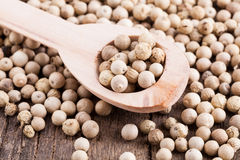 Pepper grains Stock Photo