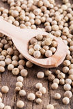 Pepper grains Royalty Free Stock Photography