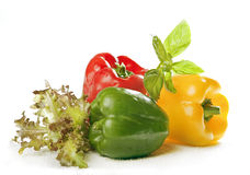 Pepper and green Stock Image