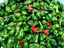 Pepper. Green, vegetables, vegetarian food Royalty Free Stock Image