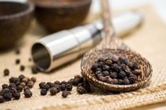 Pepper grinder and black peppercorn Royalty Free Stock Photo