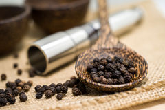 Pepper grinder and black peppercorn Royalty Free Stock Images