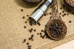 Pepper grinder and black peppercorn Stock Images