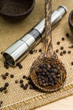 Pepper grinder and black peppercorn Royalty Free Stock Photos