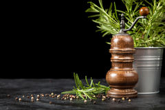 Pepper grinder on dark background Stock Photography