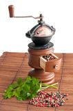 Pepper grinder, peppers and parsley. Pepper grinder different sort of peppers and some parsley leaves Royalty Free Stock Image