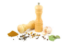 Pepper grinder and set of spices Stock Images