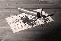 Pepper grinder Stock Image