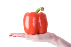 Pepper in hand. On a white backgroind Royalty Free Stock Images