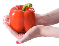 Pepper in hand. On a white backgroind Royalty Free Stock Photography