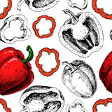 Pepper hand drawn vector seamless pattern. Vegetable engraved artistic style object Royalty Free Stock Photography