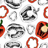Pepper hand drawn vector seamless pattern. Vegetable engraved artistic style object Stock Photography
