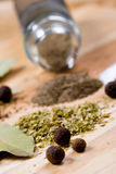 Pepper, herbs and bay leaves Stock Photography