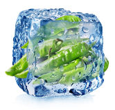 Pepper in ice cube Royalty Free Stock Photography