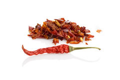 Pepper isolated Stock Image