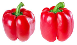 Pepper, Royalty Free Stock Image