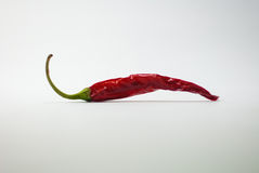 Pepper Stock Photo